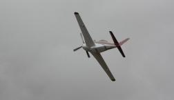 Kiwi Thunder in Flight